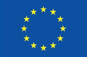 bandeira com muitas estrelas