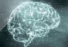 Professores da FMUL ganham Prémios de Neurociências